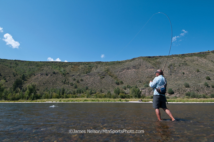 Mike Towler sets the hook on a trout while fly fishing on the South Fork of the Snake River, Idaho.