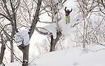 Proskier Daron Rahlves jumps over a gnarled tree branch, a typical sight around Niseko, Japan.