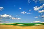 fieldscape in Union County, Pennsyvania