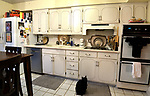 "Another view of the kitchen with cat relaxing. Photo taken on January 8, 2019 for ""At Home"" feature on Sandy Stolberg,  who uses dollar store finds as part of the decorations in her Belleville, IL condo.<br /> Photo by Tim Vizer"