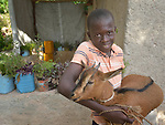 Davidson Piee, 13, wrestles a goat he got at the same time his family got a new home in Picmy, a village on the Haitian island of La Gonave where Service Chrétien d'Haïti is working with survivors of Hurricane Matthew, which struck the region in 2016. A member of the ACT Alliance, SCH is helping families like this one repair or rebuild their homes while also jump-starting their agricultural production.