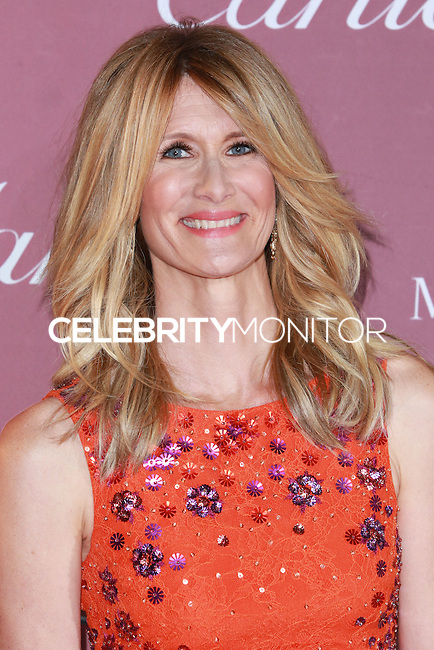 PALM SPRINGS, CA, USA - JANUARY 03: Laura Dern arrives at the 26th Annual Palm Springs International Film Festival Awards Gala Presented By Cartier held at the Palm Springs Convention Center on January 3, 2015 in Palm Springs, California, United States. (Photo by David Acosta/Celebrity Monitor)