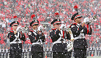 The Ohio State Marching Band entertains the crowd during a pre game snow squall at Ohio Stadium in Columbus, Ohio on November 23, 2013.  (Chris Russell/Dispatch Photo)