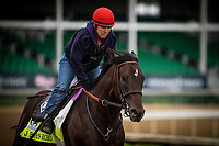 LOUISVILLE, KY - MAY 03: J Boys Echo, owned by Albaugh Family Stables LLC and trained by Dale Romans, exercises in preparation for the Kentucky Derby in preparation for the Kentucky Derby at Churchill Downs on May 03, 2017 in Louisville, Kentucky. (Photo by Alex Evers/Eclipse Sportswire/Getty Images)