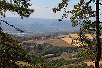 From the pine grove park, just below the citadel in the historical center of Lugnano, a panoramic view: between the branches of two pines that make a sort of frame, the ancient village on the top of a hill, in the center of the photo, is the historical center of Alviano. Behind it, on the left, one can see a lake that is, indeed, a meander of the Tevere river and a WWF natural oasis. On the background, in the valley, it flows just the Tevere river (though it cannot be clearly seen here), and there is the motorway (here between Attigliano and Orvieto, that can be instead partially seen). Finally, in the distance, there are the mountains on the other side of the Tevere, in the direction of Viterbo. Digitally Improved Photo.