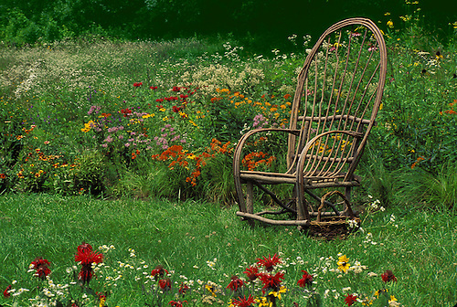 Bent willow chair at edge of meadow garden with blooming native wildflowers, Midwest, USA