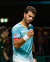 Rotterdam, The Netherlands, 14 Februari 2019, ABNAMRO World Tennis Tournament, Ahoy, <br /> Jean-Julien Rojer (NED),<br /> Photo: www.tennisimages.com/Henk Koster