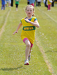 Anna Faulkner from Boyne AC taking part in the girls under nine 80m sprint at Cushinstown AC. Photo: Colin Bell/pressphotos.ie