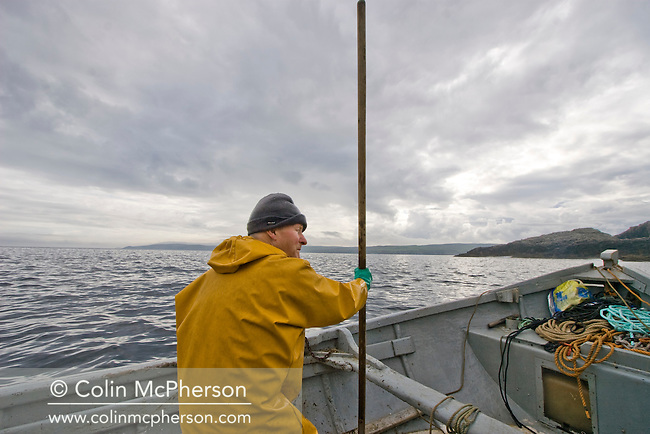 A salmon net fisherman in his coble at Armadale, Sutherland, preparing to fish one of his bag nets. The fisherman was part of a crew of men who were one of the last remaining who caught wild Atlantic salmon using traditional methods. The fishery was one of the few remaining in Sutherland in the far north west of Scotland.