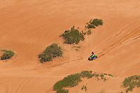 738900004 an atv rider cruises among the trees along a trail in coral pink sand dunes state park utah