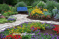 63821-21615 Blue bench and stone path in flower garden.  Black-eyed Susans (Rudbeckia hirta)  Red Dragon Wing Begonias (Begonia x hybrida) Homestead Purple Verbena, New Gold Lantana, Red Verbena, Butterfly Bushes,  Marion Co., IL