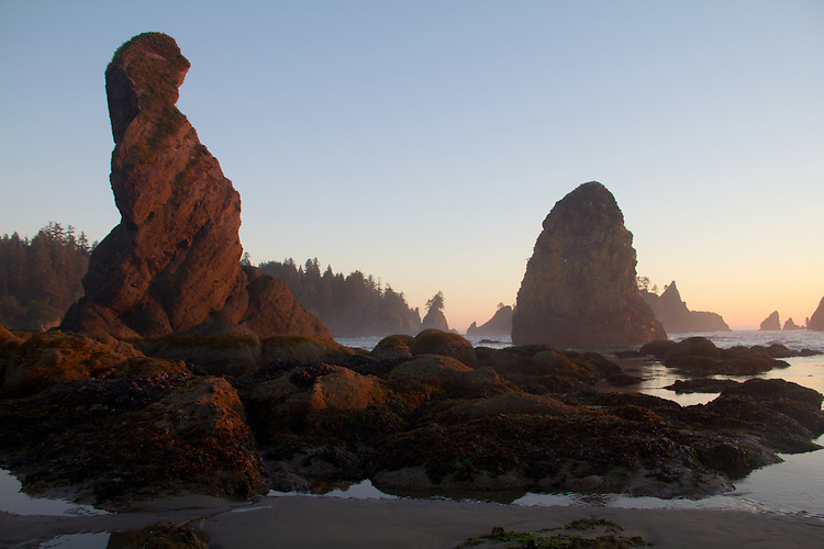Olympic National Park, Shi Shi Beach, Point of the Arches, sunset, Olympic Coast National Reserve, Washington State, Pacific Ocean, Pacific Northwest, U.S.A.,