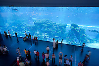 Aquarium in der Dubai Mall, Dubai, Vereinigte arabische Emirate (VAE, UAE)