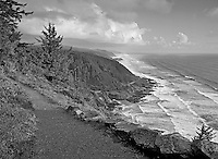 S00111M.tiff   Trail at Cape Perpetua, Oregon