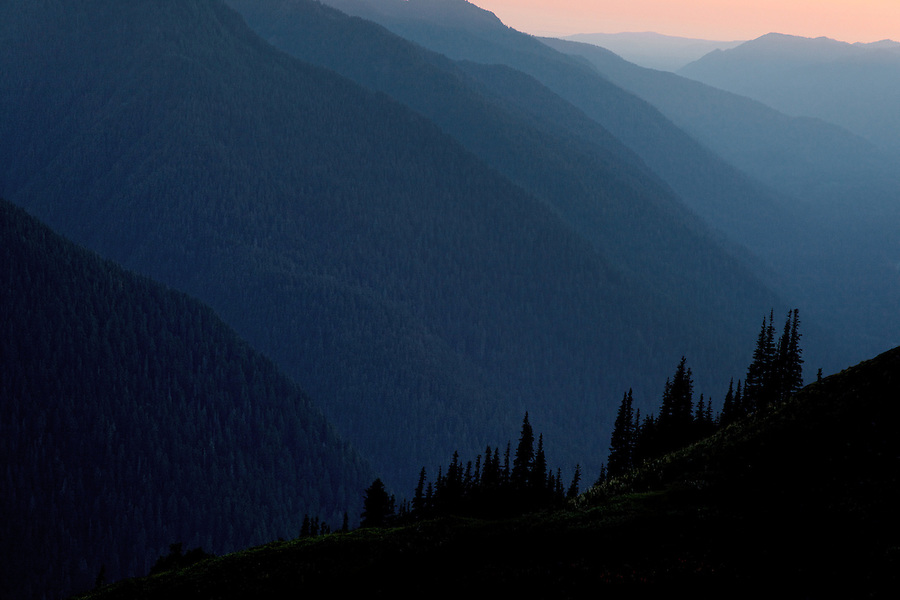 Atmospheric lighting in Hoh River valley, Olympic National Park, Washington