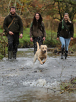 FAO JANET TOMLINSON, DAILY MAIL PICTURE DESK<br /> Pictured L-R: James Smith, Sian Richards and Charlotte Lewis with dogs in one of the farm's streams Wednesday 23 November 2016<br /> Re: The Dog House in the village of Talog, Carmarthenshire, Wales, UK