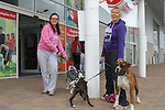 "Imelda McKeogh with Hollie and Amanda Kessie with Alfie and Abbi enjoying ""National Dog Walking Day"" at Petmania...(Photo credit should read Jenny Matthews www.newsfile.ie)....This Picture has been sent you under the conditions enclosed by:.Newsfile Ltd..The Studio,.Millmount Abbey,.Drogheda,.Co Meath..Ireland..Tel: +353(0)41-9871240.Fax: +353(0)41-9871260.GSM: +353(0)86-2500958.email: pictures@newsfile.ie.www.newsfile.ie."