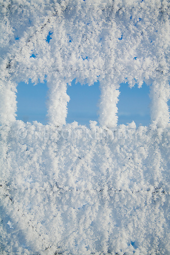 Patterns in a fence covered with thick hoarfrost