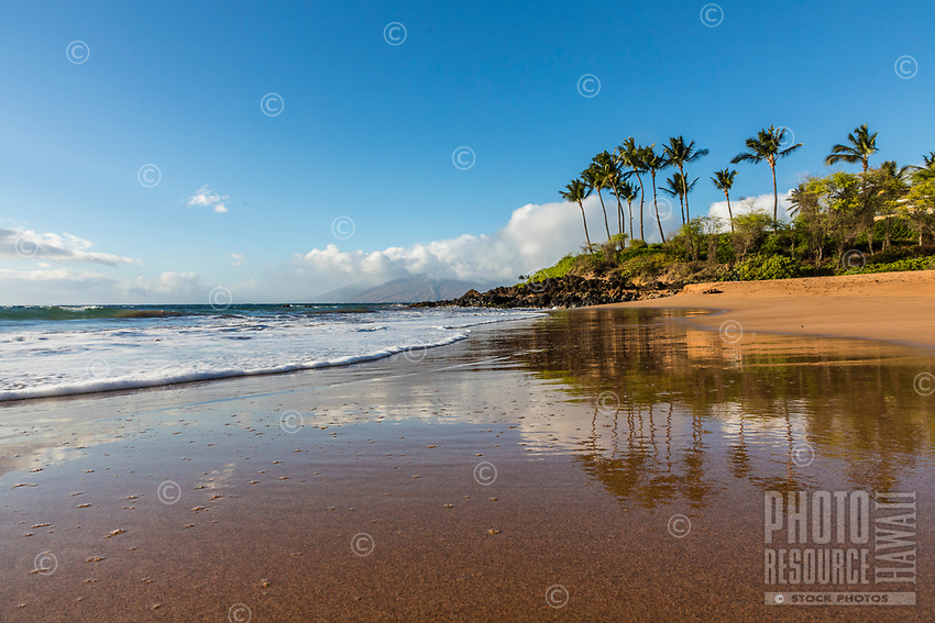 Palm trees reflected in the receding waters of Po'olenalena Beach in the afternoon sun, Maui.