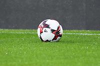 Spielball - 04.10.2017: Deutschland Abschlusstraining, Windsor Park Belfast