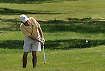 Rye '10-11: Boys Golf