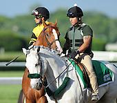 Belmont Stakes - Palace Malice