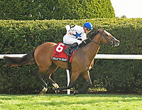 LEXINGTON, KY - APRIL 13: #6, Heart to Heart, ridden by Julien Leparoux, wins the G1 Maker's 46 Mile at Keeneland Race Course on April 13, 2018 in Lexington, KY. (Photo by Jessica Morgan/Eclipse Sportswire/Getty Images)