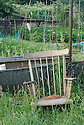 An old wooden chair on an allotment plot, mid June.