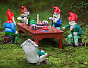 29/05/15<br /> <br /> Wine and cake in the woods.<br /> <br /> For one group of hardy folk, today's rain only adds to the fun that can be had by the beach, fishing in the river, or playing in the woods.<br /> <br /> The gnomes, and a few pixies and fairies, make up a collection, now believed to be close to 2,000 individuals, that 'live' at the Gnome Reserve near Bideford, North Devon.<br /> <br /> Visitors are asked to wear gnome hats, so as not to scare the gnomes who feature as the largest collection in the Guinness Book of World Records. <br /> <br /> Ann Atkin's collection began in 1979 and features traditional gnomes on toad-stools to Olympian athletes, astronauts who work for 'GNASA', a beach scene complete with gnomes in bikinis, a queue for the ice-cream van, Punch and Judy gnomes and another floating on a lilo. Other gnomes can be scene kissing, and flashing their bottoms as the visit the Gents and Ladies toilets. <br /> <br /> <br /> All Rights Reserved - F Stop Press.  www.fstoppress.com. Tel: +44 (0)1335 418629 +44(0)7765 242650
