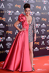 Cristina Rodriguez attends to the Red Carpet of the Goya Awards 2017 at Madrid Marriott Auditorium Hotel in Madrid, Spain. February 04, 2017. (ALTERPHOTOS/BorjaB.Hojas)