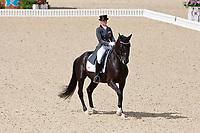 ESP-Mestresm Barbancon (PAINTED BLACK) 2012 GBR-London Olympic Games - Greenwich Park: EQUESTRIAN/Dressage - Grand Prix: PLACE-19TH