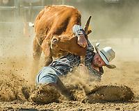 RAM Rodeo'17 0729&30 Beachburg