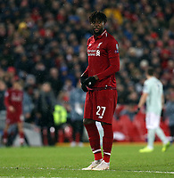 Liverpool's Divock Origi<br /> <br /> Photographer Rich Linley/CameraSport<br /> <br /> UEFA Champions League Round of 16 First Leg - Liverpool and Bayern Munich - Tuesday 19th February 2019 - Anfield - Liverpool<br />  <br /> World Copyright © 2018 CameraSport. All rights reserved. 43 Linden Ave. Countesthorpe. Leicester. England. LE8 5PG - Tel: +44 (0) 116 277 4147 - admin@camerasport.com - www.camerasport.com