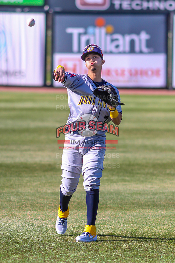 Burlington Bees shortstop Livan Soto (7) warms up in the outfield prior to a Midwest League game against the Wisconsin Timber Rattlers on April 26, 2019 at Fox Cities Stadium in Appleton, Wisconsin. Wisconsin defeated Burlington 2-0. (Brad Krause/Four Seam Images)