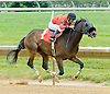 Reckless Runner winning at Delaware Park on 5/30/12