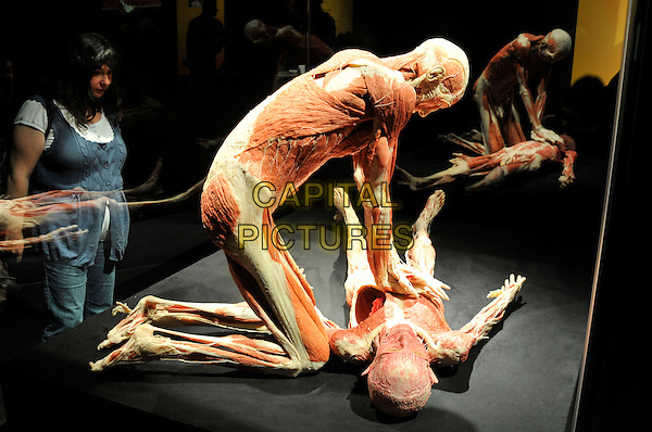 MODELS.Press conference for the new sex plastinates which is part of the Body Worlds & the Mirror of Time exhibition at the O2 Arena, Greenwich, south-east London, England..June 23rd, 2009.bodyworks body works full length muscles internal organs flesh muscle skin models bone hands cpr cardiopulmonary resuscitation gesture.CAP/PL.Phil Loftus/Capital Pictures.