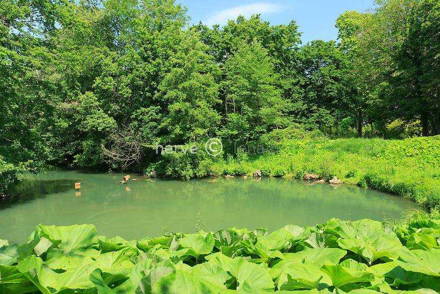 France, Loiret (45), Orléans-la-Source, Parc Floral de la Source, la source du Loiret appellée le Bouillon est une résurgence // France, Loiret, Orleans la Source, Parc Floral de la Source, the source of the Loiret named Bouillon is a resurgence