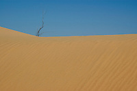 Algodones Dunes, Imperial County, California