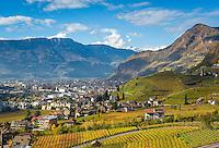 Italy, Alto Adige-Trentino (South Tyrol), Bolzano: vineyards at Valle di Isarco, at background provincial capital Bolzano | Italien, Suedtirol (Alto Adige-Trentino), Bozen: Weinberge im Eisacktal, im Hintergrund die Landeshauptstadt Bozen