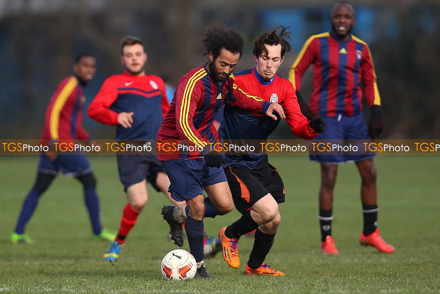 Shakespeare (red/blue) vs FC Bartlett, Hackney & Leyton Sunday League Dickie Davies Cup Football at Hackney Marshes, Hackney, England on 14/02/2016
