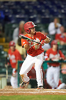 Ohio State Buckeyes third baseman Nick Sergakis (21) squares to bunt during a game against the Pitt Panthers on February 20, 2016 at Holman Stadium at Historic Dodgertown in Vero Beach, Florida.  Ohio State defeated Pitt 11-8 in thirteen innings.  (Mike Janes/Four Seam Images)