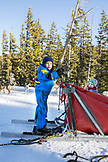 USA, Oregon, Bend, a young boy plays around on the sled while waiting to depart on her sled dog ride at Mt. Bachelor