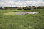 Throughflow fed dew pond in meadow of gently sloping valley, Moor Hall farm, Eye, Suffolk, England