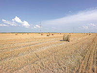 AG_LOCATION_65000