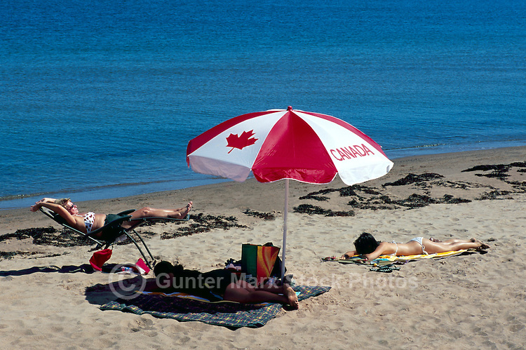 Panmure Island Provincial Park, PEI, Prince Edward Island, Canada - People sunbathing on Sandy Beach along Gulf of St Lawrence