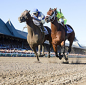 Blame, outside, defeats Quality Road by the narrowest of margins in the $750,000 Whitney.