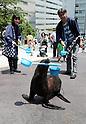 Uchimizu (water sprinkling) event at Aqua Park Shinagawa aquarium in Tokyo