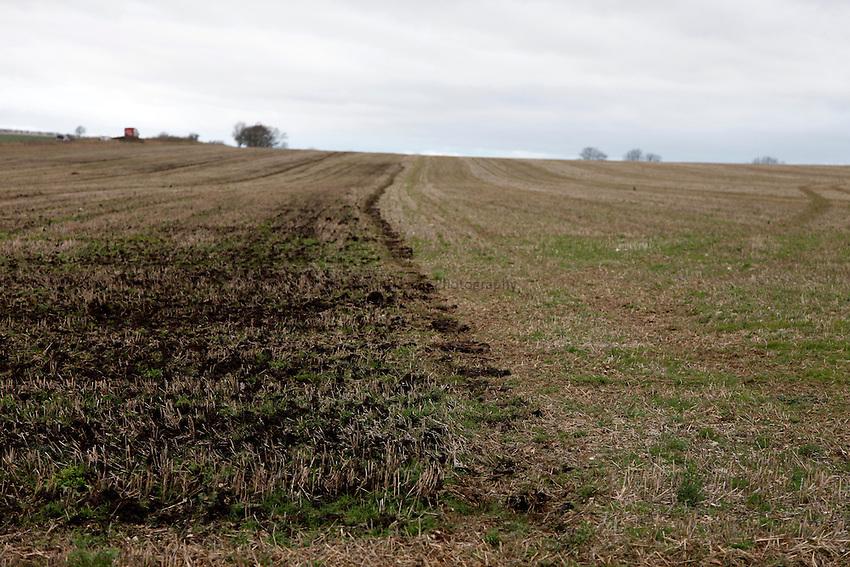 Photo: Richard Lane/Richard Lane Photography. Muck speading near Lower Woodford, Salisbury, Wiltshire. 07/12/2012.
