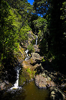 Wairere Falls in Whakatane, New Zealand on Tuesday, 18 December 2018. Photo: Dave Lintott / lintottphoto.co.nz