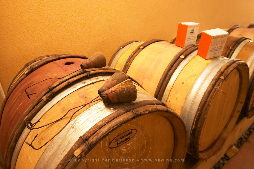 Wooden barrels with wooden plugs with iron wire that are used to burn sulphur pellets inside the barrique to clean and disinfect the barrel. Boxes with sulphur pellets in the background. Domaine Gilles Robin, Les Chassis, Mercurol, Drome, Drôme, France, Europe